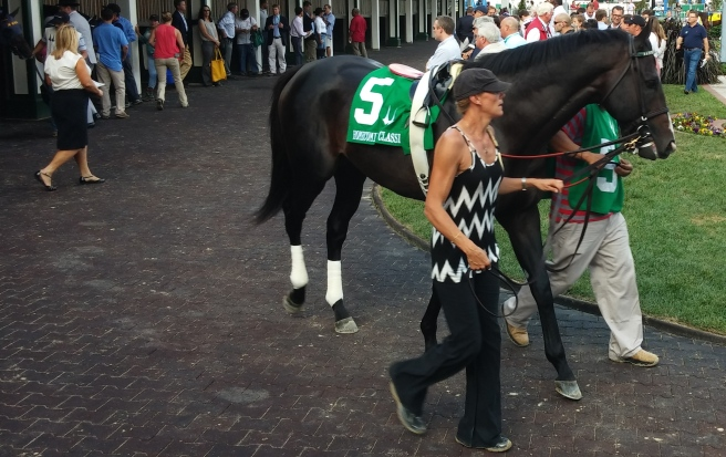 Cigar Street walking around the paddock before he scored in the Homecoming Classic.