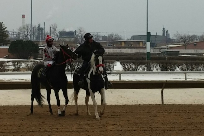 Mischief N Mayhem, in the post parade before the Hawthorne 1st on Saturday, February 21.