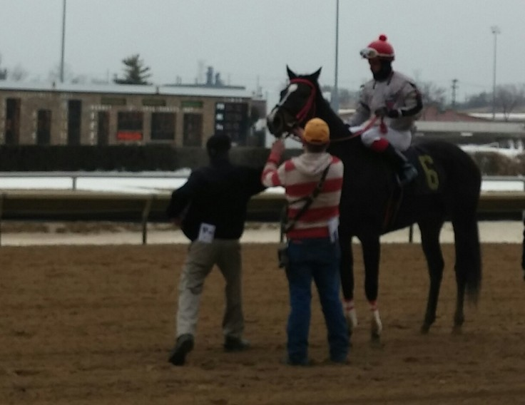 Mischief N Mayhem after her second-place finish on February 21.