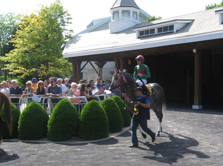 Chris Emigh aboard, Away Westward heads out to the track before his sixth start.