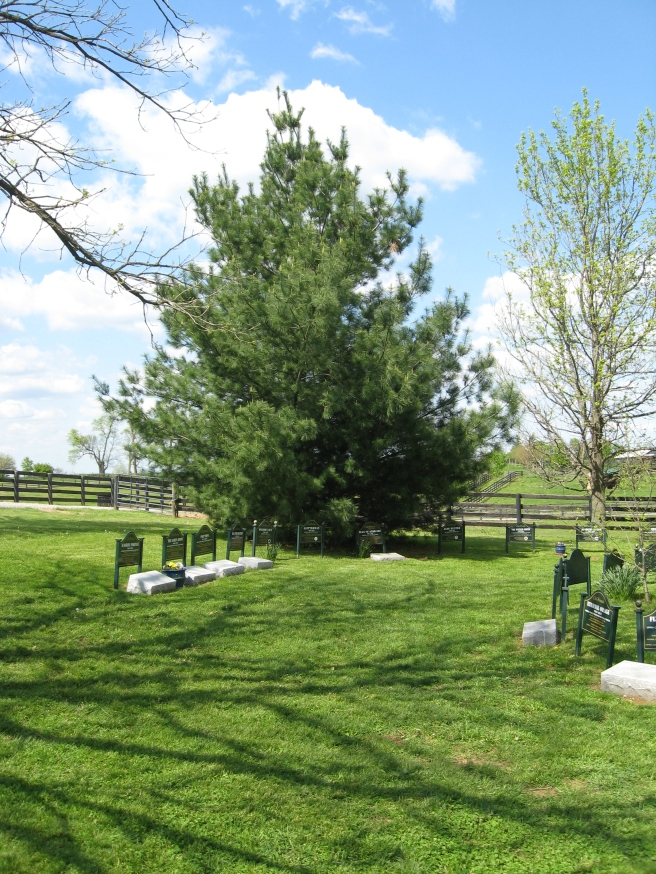 The cemetery at Old Friends.  Black Tie Affair rests under the tree.