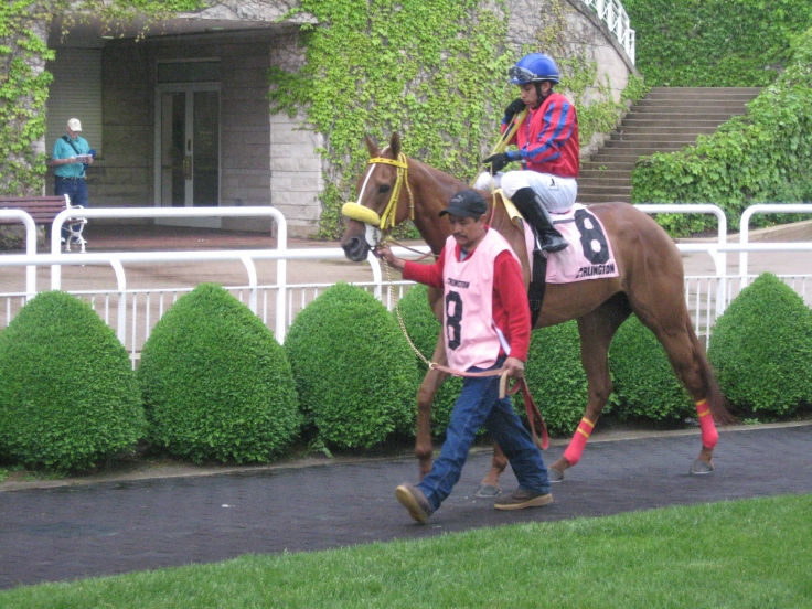 Seven-year-old Chica Bonita heads to the track.  She missed the board in her first five starts this year, but won Sunday's eighth race.