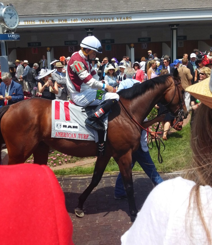Rafael Hernandez gets set on Divisidero.  They won the American Turf (GII).