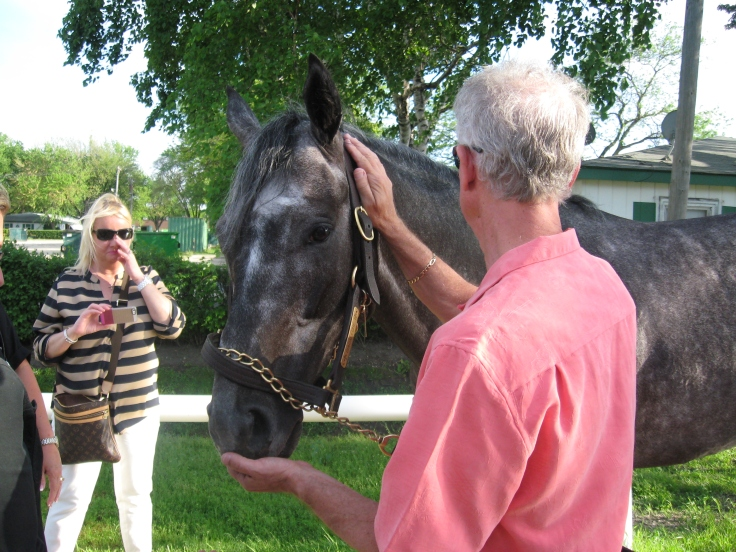 Giacallure does not like peppermints, but Mike makes sure he gets plenty of horse treats.
