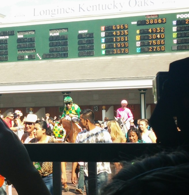 Irish You Well makes his way from the paddock to the track.  He finished 4th behind Paganol in the opener.
