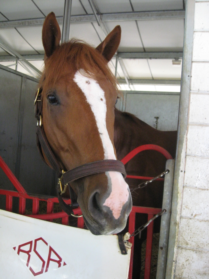 Modern Medicine practices his dashing face, fully expecting to get his picture taken at Churchill on Friday.