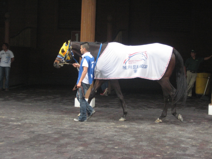 Sacred Range, trained by Dee Poulos, walks the paddock before the Arlington 6th.  He wears a blanket from the 1991 Iselin: a race won by Black Tie Affair.  Dee's late husband Ernie Poulos trained Black Tie Affair.