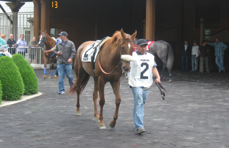 Tam, like every other baby out of Beret (including her multiple stakes winning sister Kepi), is named after some kind of hat.  Tam put it all together Sunday, winning a maiden special weight turf dash by daylight.