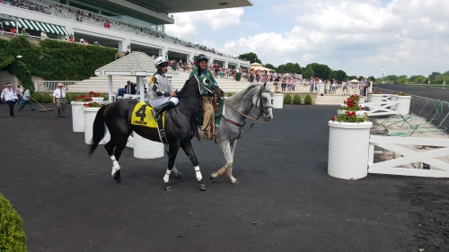 Frostbite Falls and Julio Felix take to the track on Saturday.