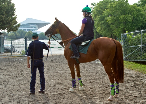 California Chrome, Raul Rodriguez, and Anna Wells look out over Arlington Park on July 11. (Photo courtesy Four Footed Fotos.)