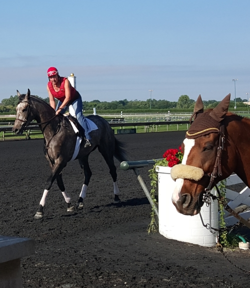GIve It to Mikey at Arlington Park morning works on August 11, 2015.