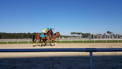 Spark Kit was in tough in the Tampa Bay Stakes, and finished last.  However, it was nice to see another familiar face from last year in Chicago.