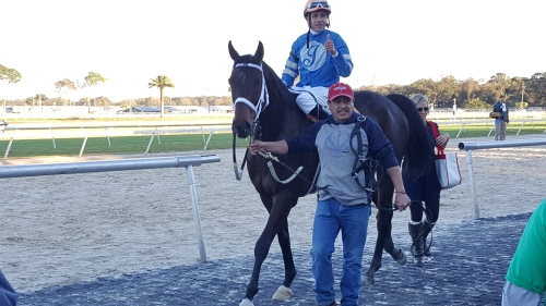 Illinois-bred Sandia Crest was quite proud of himself after winning the 11th race on Saturday.  Culpa completed the Illinois-bred exacta.