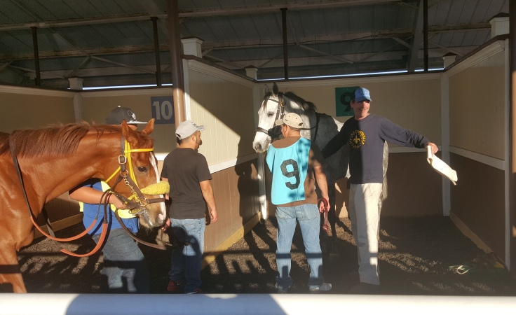 Another bit of home in Tampa, with Illinois-breds Brewmistress (left) and Silver Liner. Brewmistress won their race.
