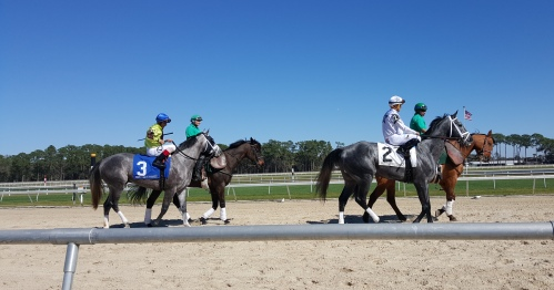 However, Destin (3) was able to outfinish Rafting in the Sam F. Davis. Destin's favoured stablemate, Gettysburg (2), was a well-beaten fifth.