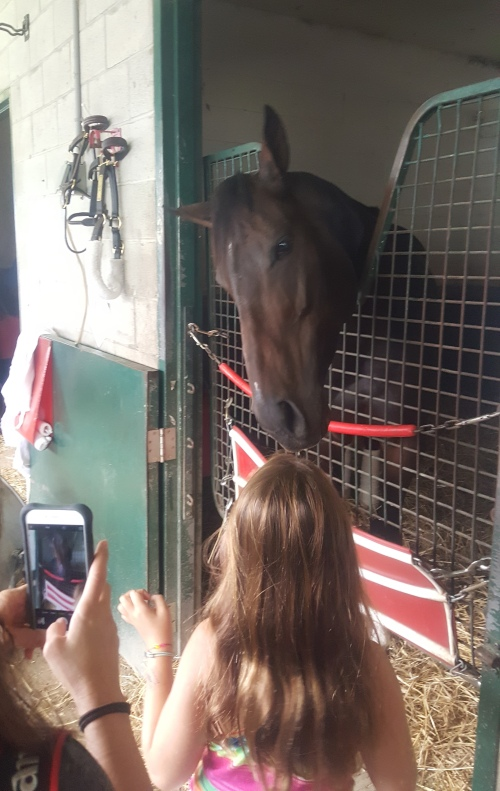 Tepin makes a lifelong horse racing fan.