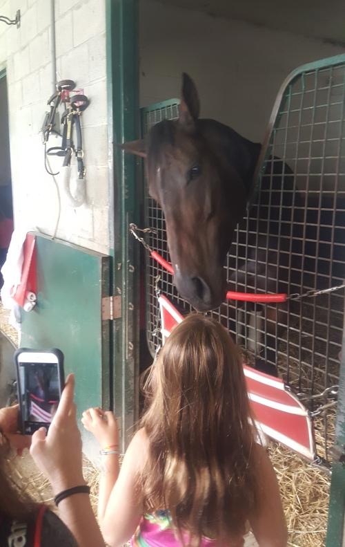 Tepin makes a lifelong horse racing fan.
