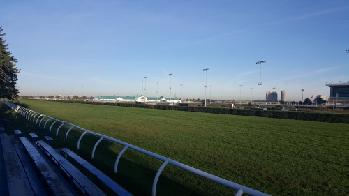 Woodbine, as seen from the bleachers along the backstretch.