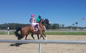 Gabrielle'stoblame, a Blame half-sister to Kentucky Derby winner Nyquist, finished fifth on debut after acting up in the paddock, the post parade, and behind the gate.