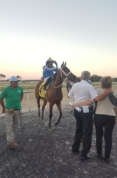 The sun begins to set as Miss High Tide, the final winner on the Sam F. Davis Day card, makes her way into the winners' circle.