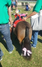Tampa Bay Downs mascot Mouse had her tail braided for Sunday's appearance in the family area.
