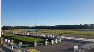 Looking out over the Tampa Bay Downs paddock during morning works.
