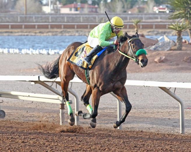 CONQUEST-MO-MONEY-Mine-That-Bird-Derby-02-26-17-Finish.jpg